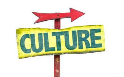 What Do We Make of Culture?